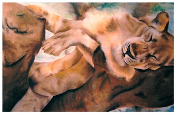 dessin d'un lion aux pastels secs
